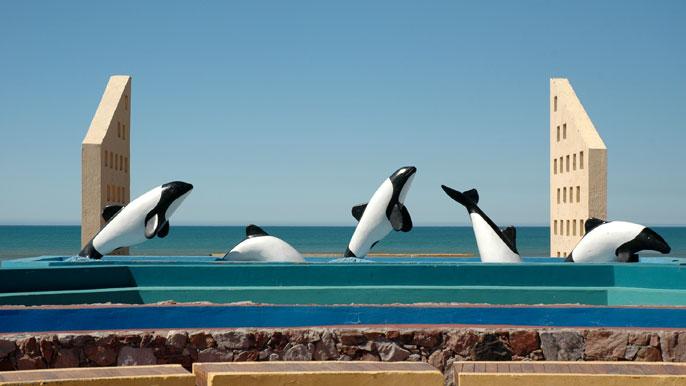 Secuencias de mamífero marino