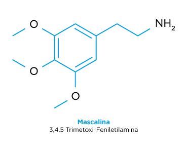 Estructura química de la mescalina.
