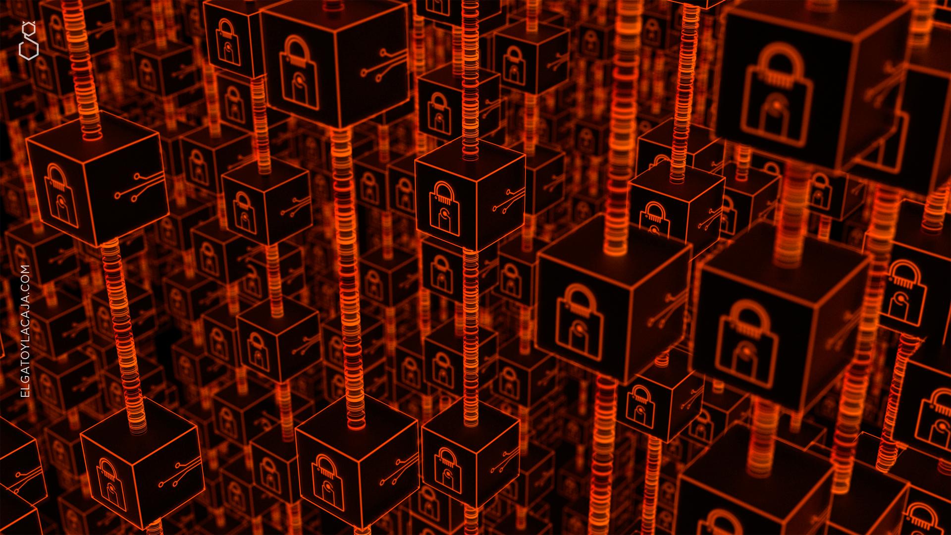 Néstor en blockchain
